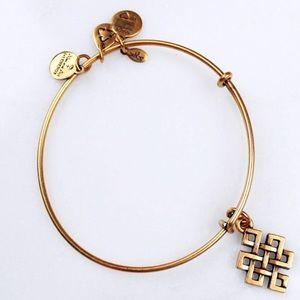 NWOT🎉Alex and Ani Endless Knot bracelet